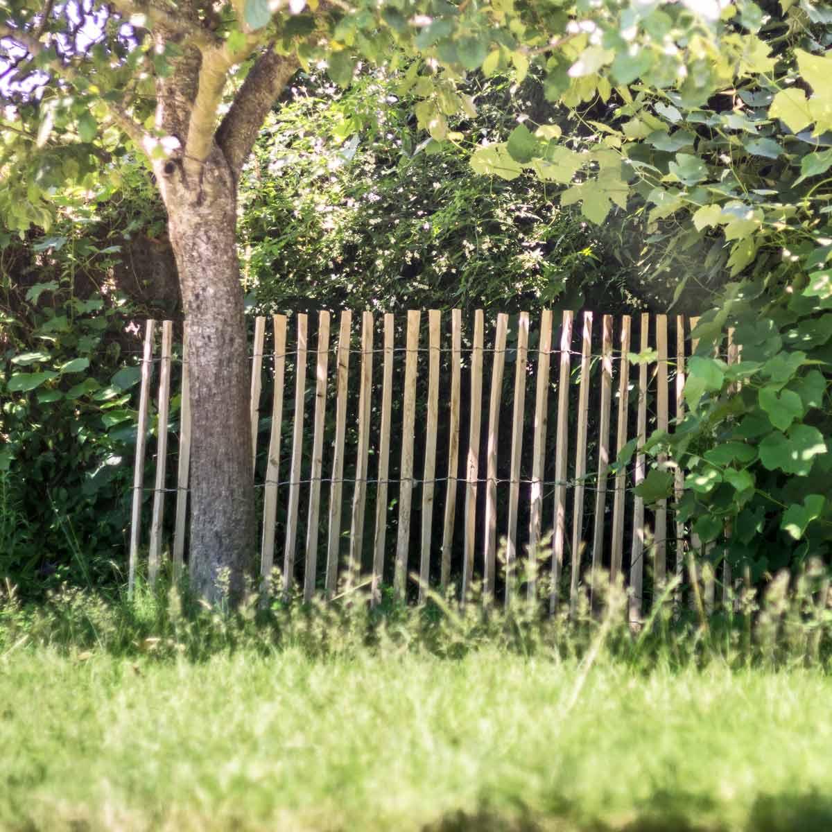 Amenagement Jardin Exterieur Photo aménagement et décoration du jardin   jardins-animes