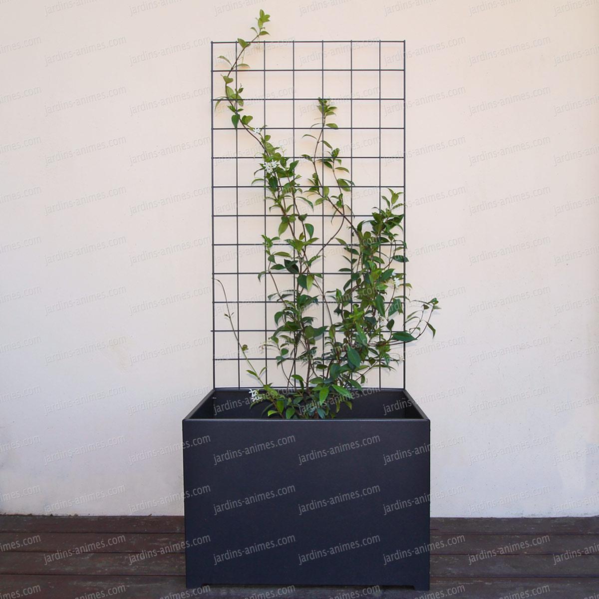 Jardinière Et Bac De Terrasse Bois: Bac Jardinière Et Treillis En Acier L. 70cm