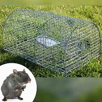 Cage piège à rat nasse multiprise