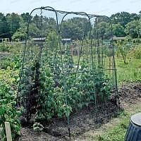 Cage Protection des Récoltes avec filet anti oiseau et chassis résistant