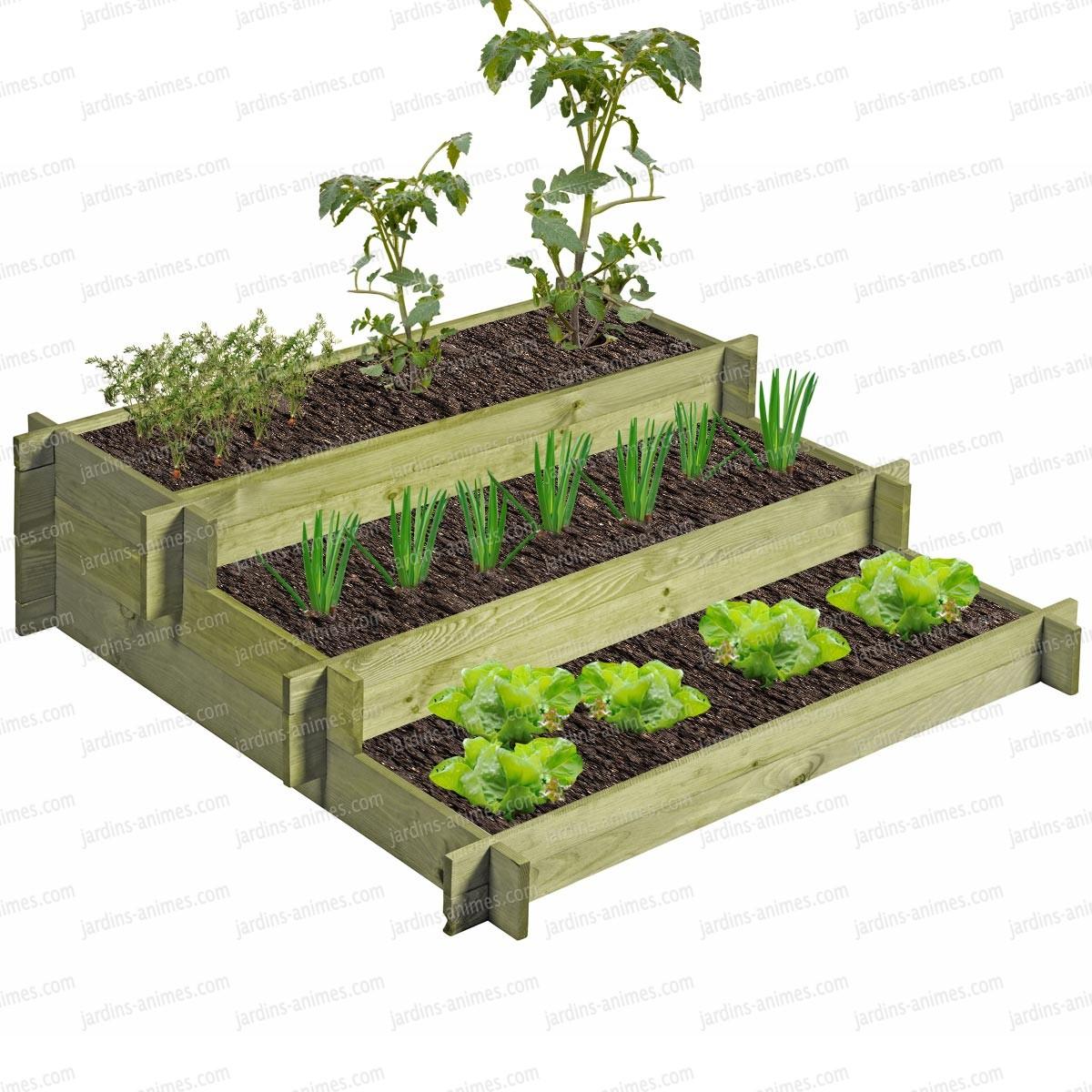 Carr potager 3 tages bois trait g otextile for Carre jardin potager