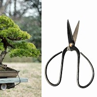 Petit Ciseau à bonsai