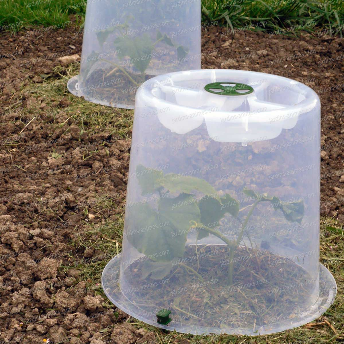 Cloches potag res forcer lot de 2 tunnel chassis cloche - Cloche de jardin en verre ...