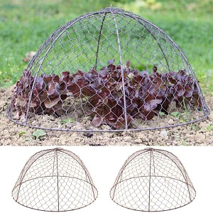Cloche de protection en grillage à poule haut.26cm, lot de 2
