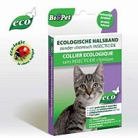 Collier insectifigue pour Chat - écologique