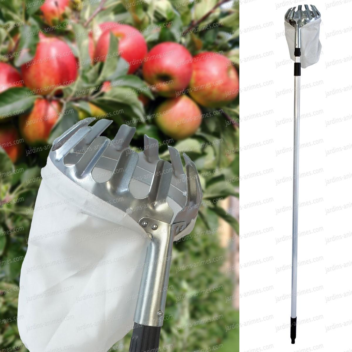 Cueille fruit t l scopique 150cm 260cm r colter les fruits - Cueille fruit telescopique ...