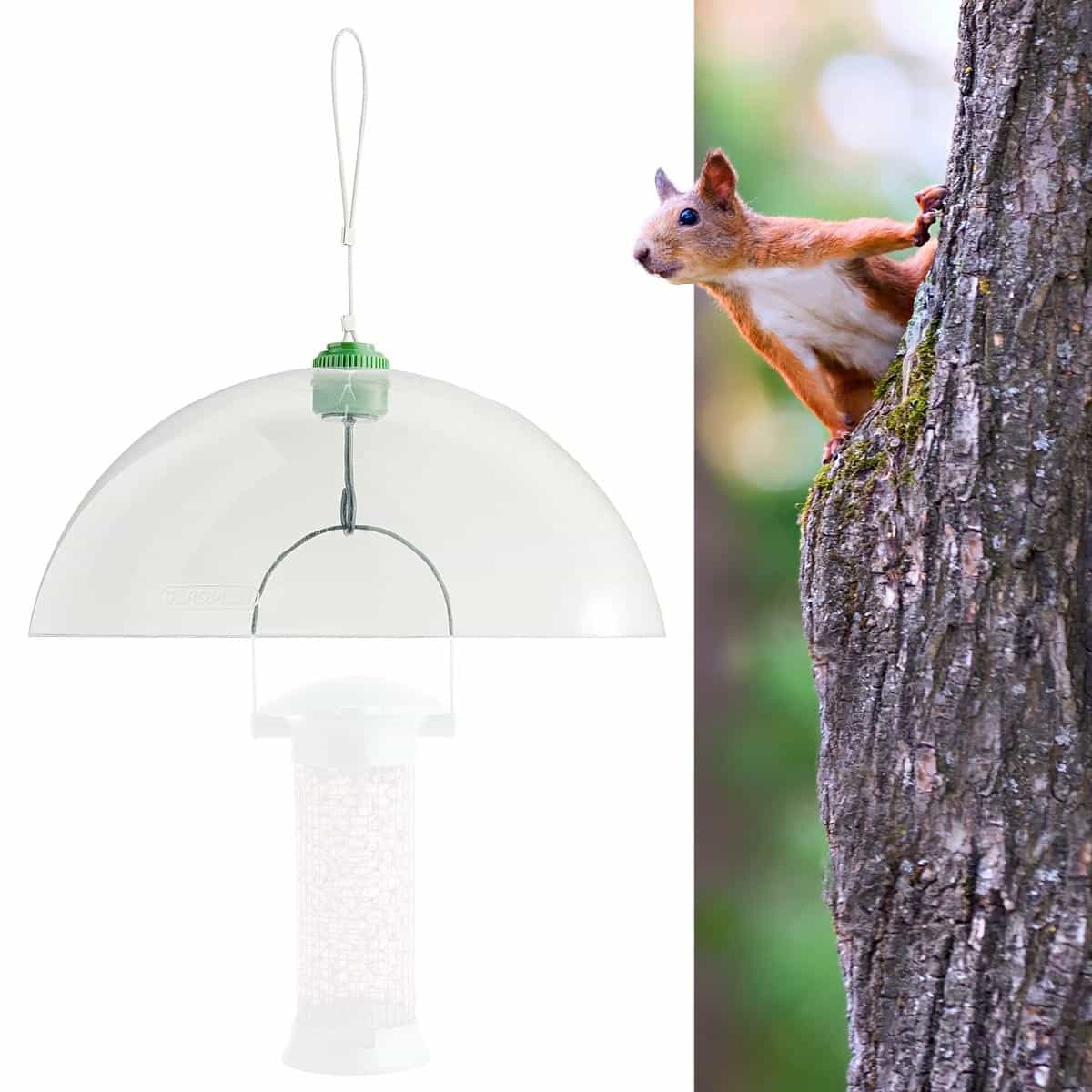 Dome anti ecureuil pour mangeoire oiseau mangeoires for Jardin anime