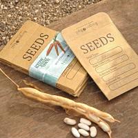 Enveloppe kraft à semis et graines - pack de 20