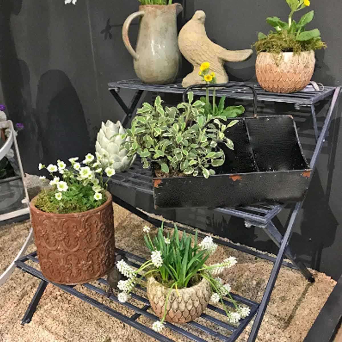 Plante Robuste Pour Terrasse Étagère à plantes 3 marches en fer anthracite