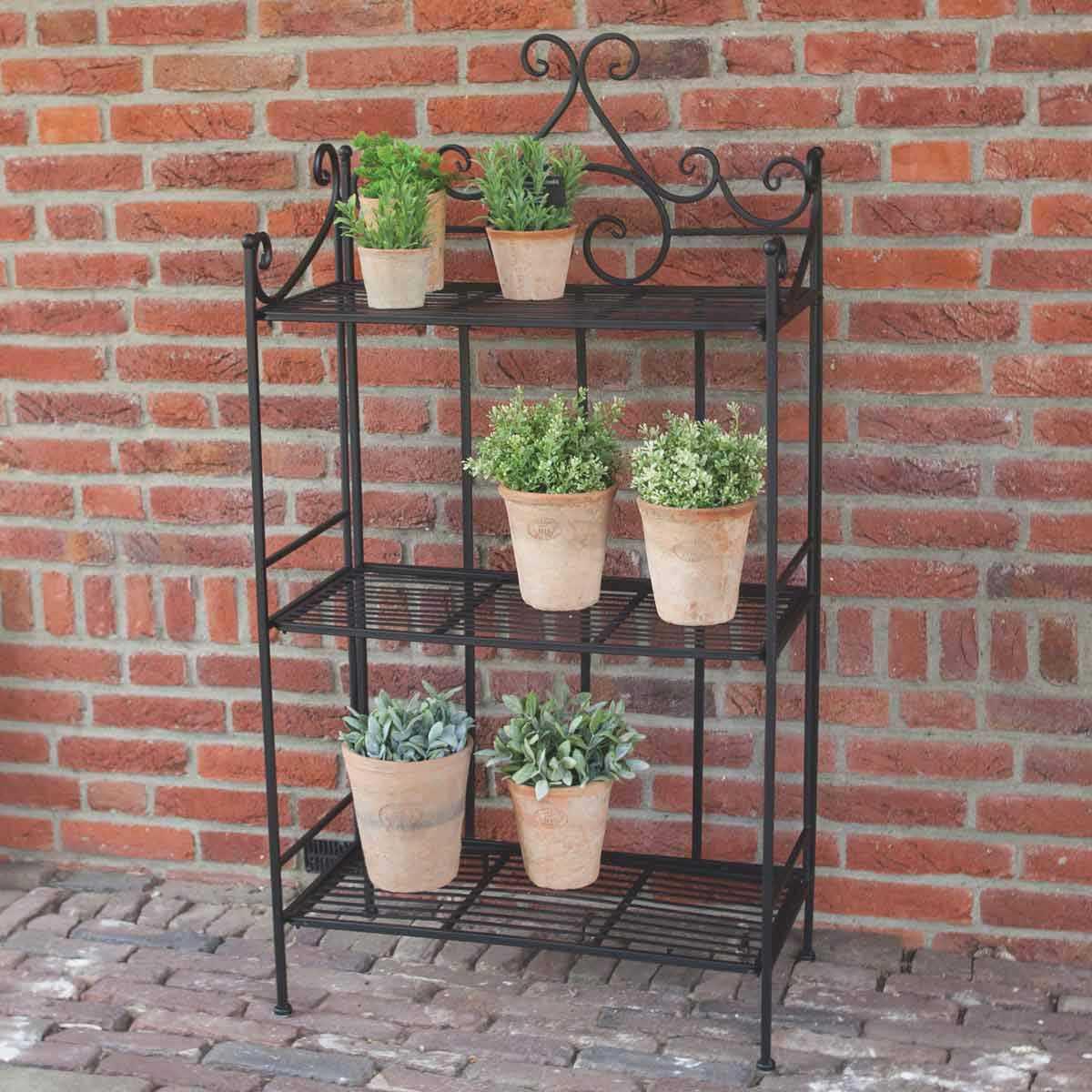 Plante Robuste Pour Terrasse Étagère pliante pour plantes en fer 3 niveaux 113cm
