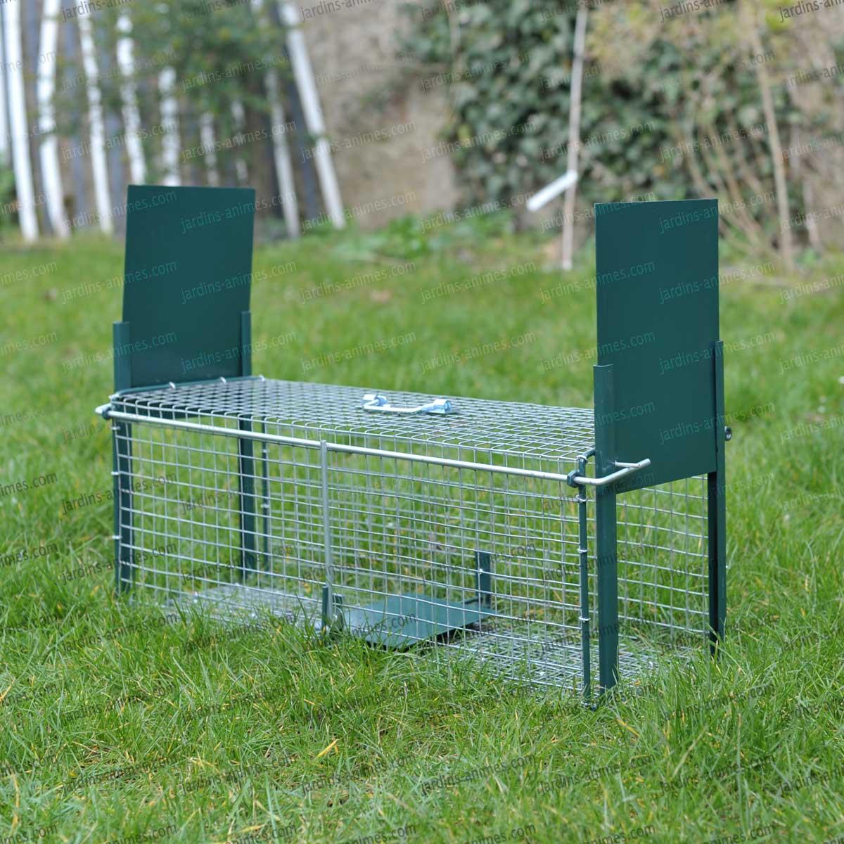 cage piege lapin double entr e traitement anti insectes et souris. Black Bedroom Furniture Sets. Home Design Ideas
