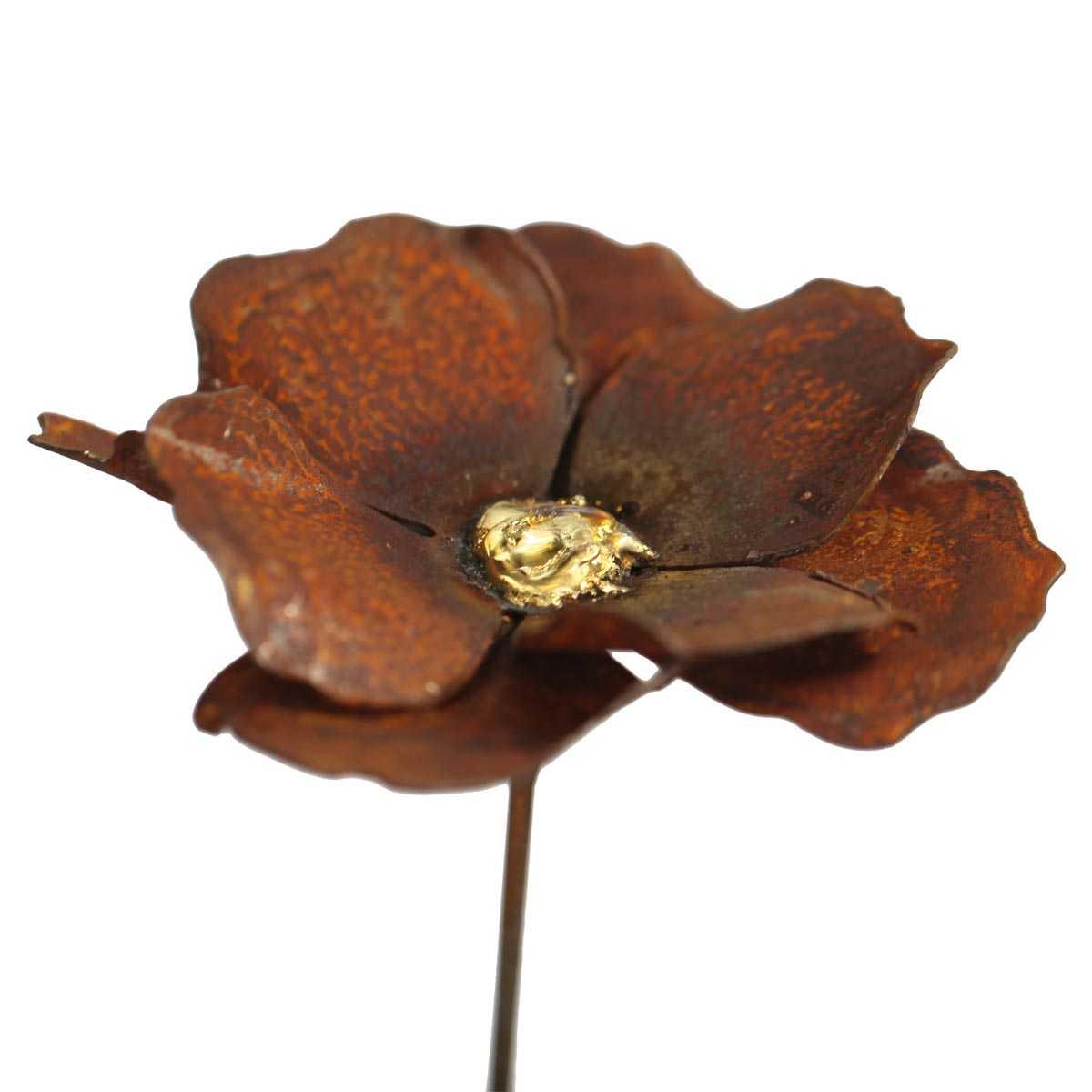 Planter Des Coquelicots Dans Son Jardin fleur de coquelicot à planter en métal rouillé