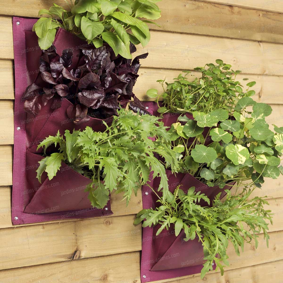 jardin vertical verti plant 3 poches pour salades aromatiques et petites plantes lot de 2 pots. Black Bedroom Furniture Sets. Home Design Ideas