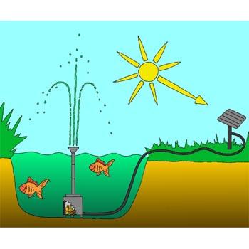Pompe solaire bassin 300w sujet fontaine pompe bassin for Pompe bassin exterieur
