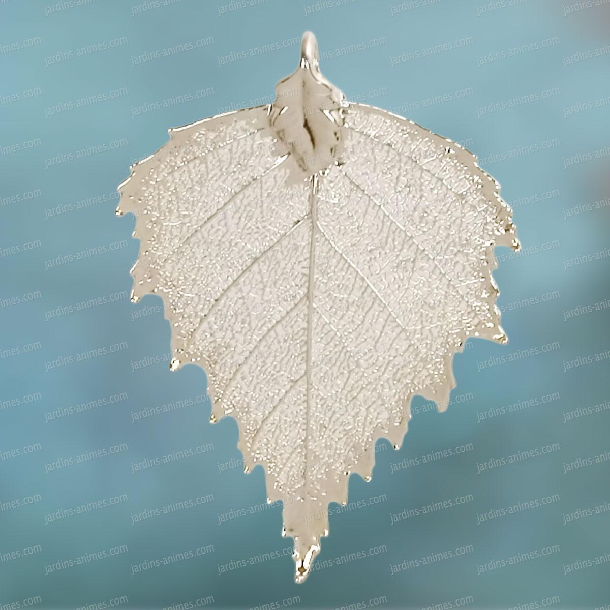 Feuille de bouleau en argent bijoux de jardin - Feuille de bouleau photo ...