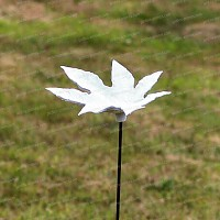 Bain d'oiseau porcelaine aux feuilles palmées
