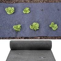Feutre de culture pour salades, pré percé 500cmx60cm