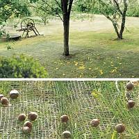 Filet de ramassage des récoltes fruits, olives 4m x 6m