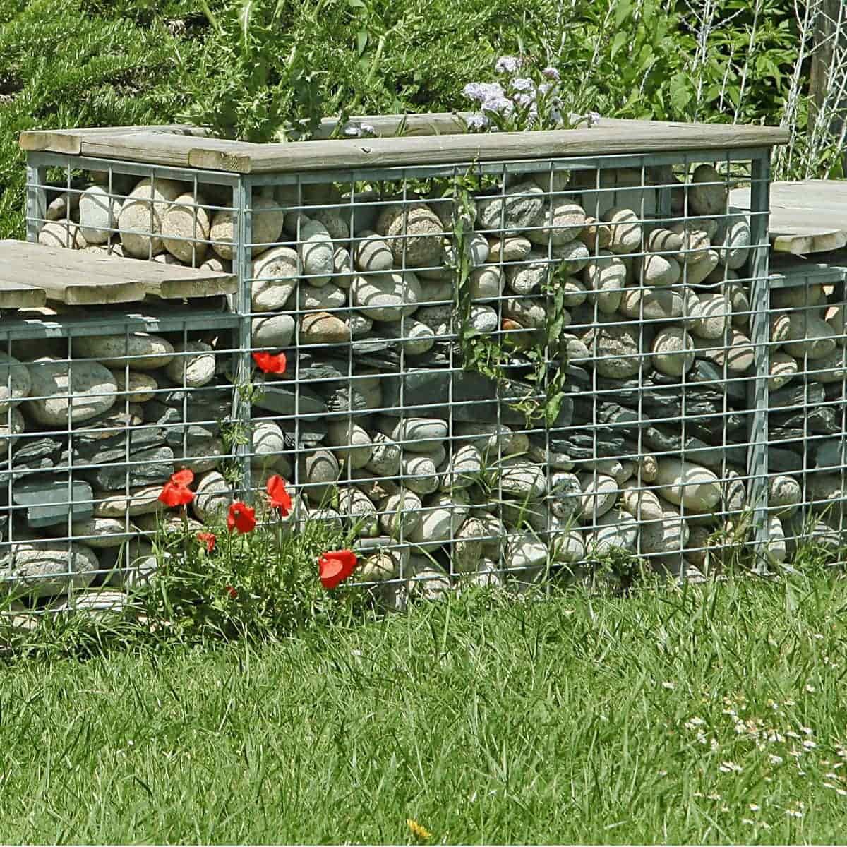 Amenagement Exterieur En Cailloux mur en gabion, galet et gravier décoratif | jardins-animes
