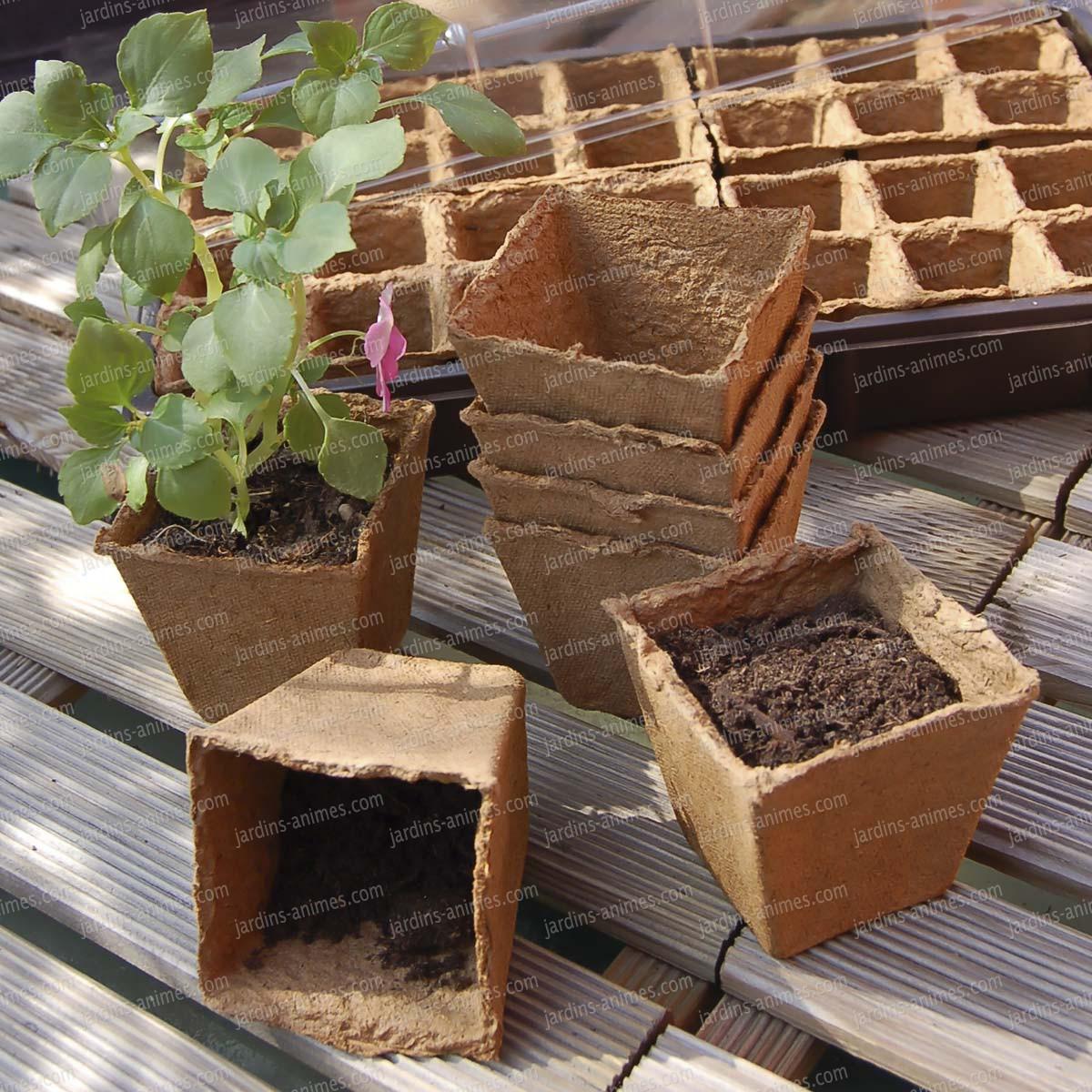 pots semis 6x6cm 100 biod gradable lot de 20 accessoires de culture semis. Black Bedroom Furniture Sets. Home Design Ideas