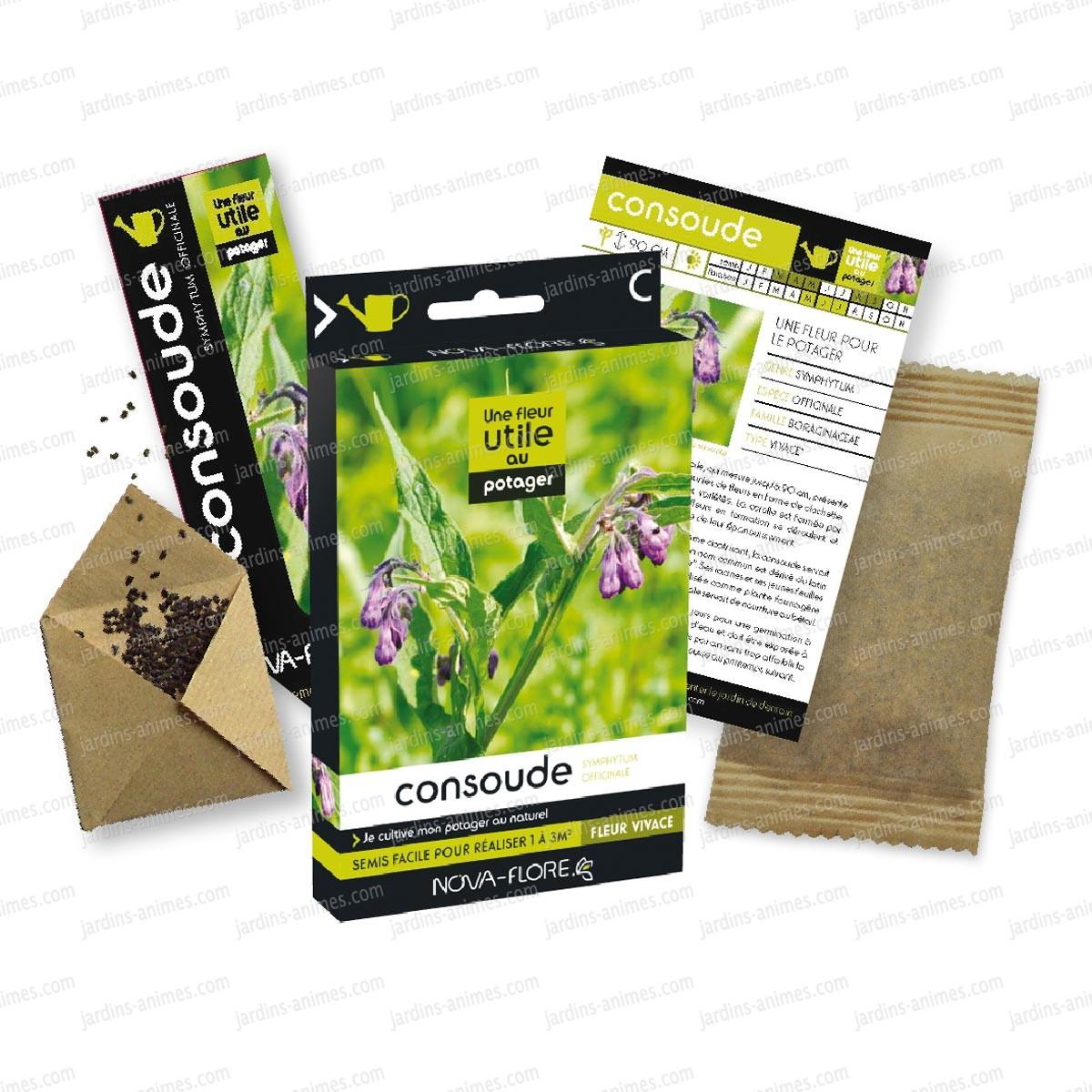 Fleur utile au potager graine de consoude graines de fleurs utiles - Graine de consoude ...