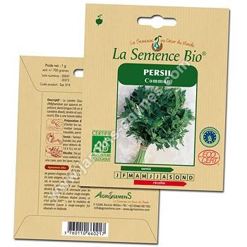 Associer persil et oignon par lejardinero - Graine de persil ...