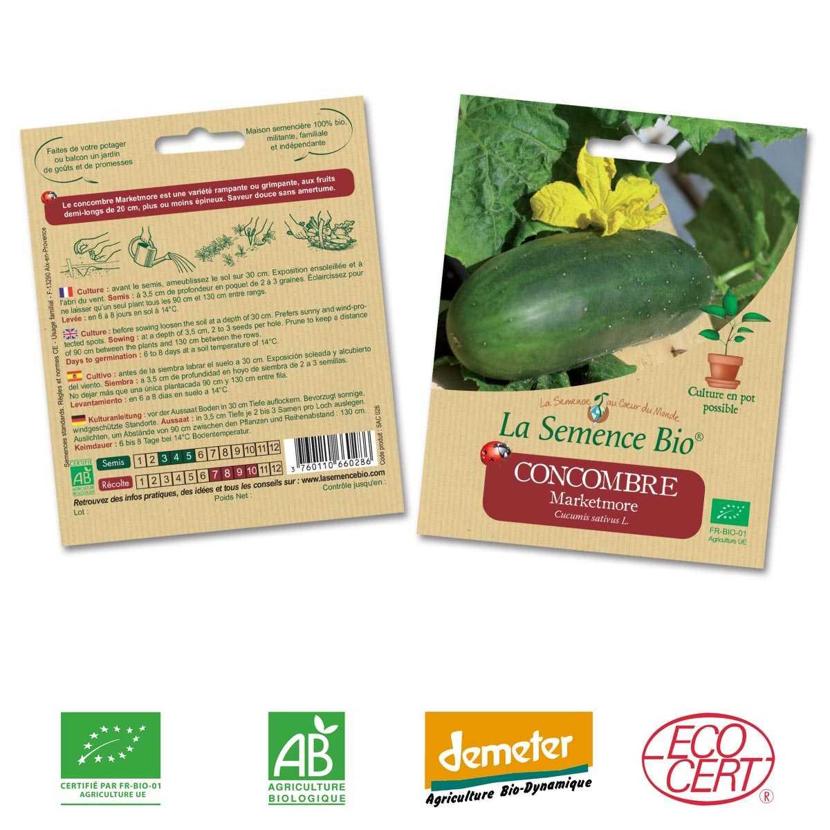 légumes jardin potager méthode BIO 50 Graines de Concombre Marketmore