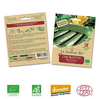 Courgette Black Beauty graine semence bio