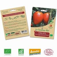 Tomate Coeur de boeuf graine semence bio