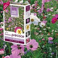 Prairie Fleurie - Floraison précoce - graines de fleurs - 7m2