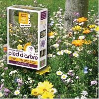 Prairie Fleurie - Pied d'arbre - mélange de graines - 7m2