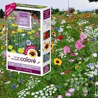 Prairie Fleurie - Coloré - graines de fleurs - 7m2