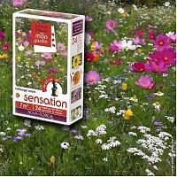 Prairie Fleurie - Fleurs mélange Sensation - 7m2