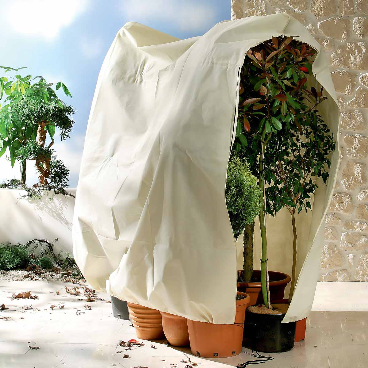 Voile d 39 hivernage jumbo x larg protection for Protection hivernale plantes