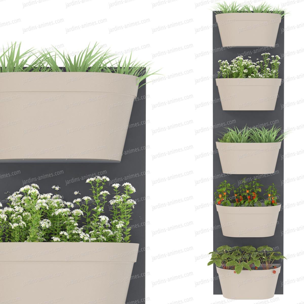 Jardin vertical 5 bacs fond gris fonc bac gris chaud for Jardin mur gris