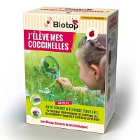 Kit pédagogique d'élevage de coccinelles Coccifly