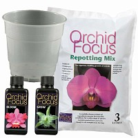 Kit de rempotage Orchidée - pot 15cm
