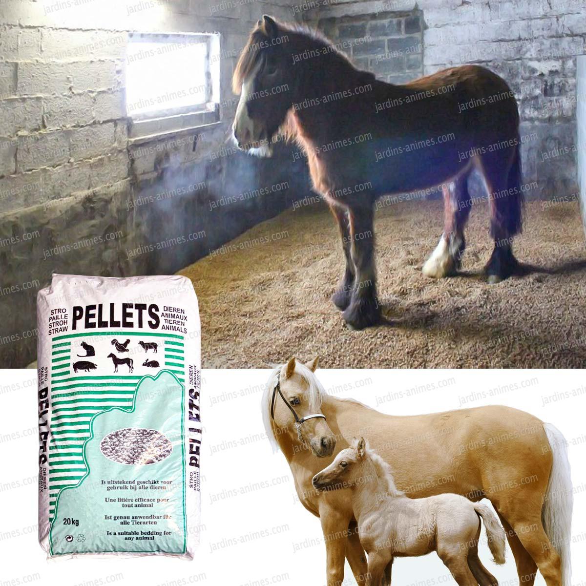 Liti re pour chevaux en pellets de paille de froment equipement et soin du cheval - Acheter de la paille pour jardin ...