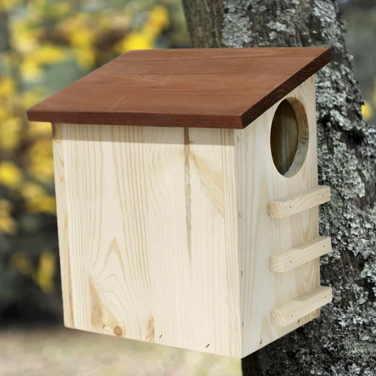 jardins anim s animaux animaux du jardin maisons abris animaux ecureuil maison bois fsc. Black Bedroom Furniture Sets. Home Design Ideas