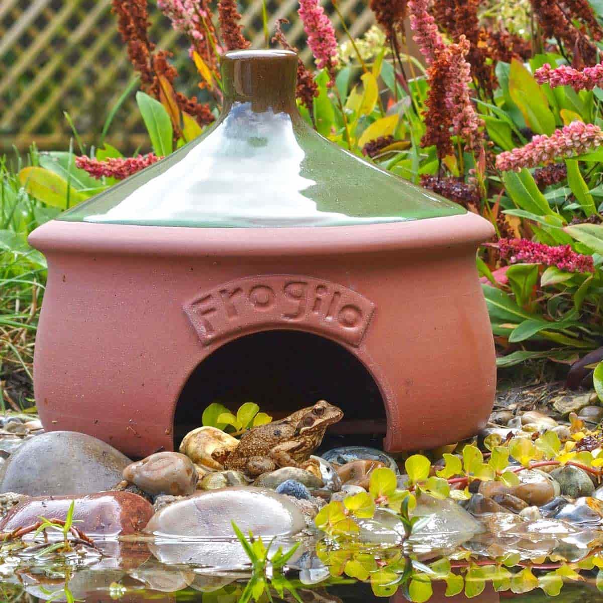 Maison et habitat pour grenouilles et crapauds en for Maison pour herisson jardin