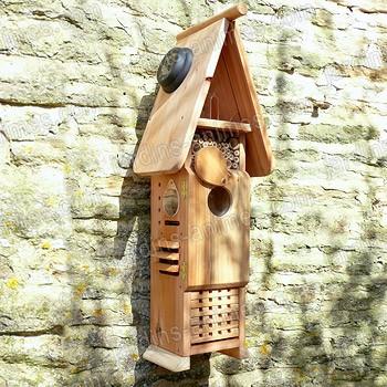 grande tour observation des insectes en bois fsc maisons abris animaux. Black Bedroom Furniture Sets. Home Design Ideas