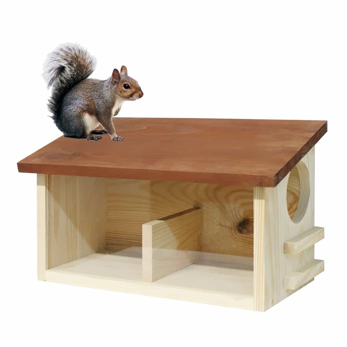 Ecureuil buffet mangeoire double en bois fsc maisons for Maison pour herisson jardin