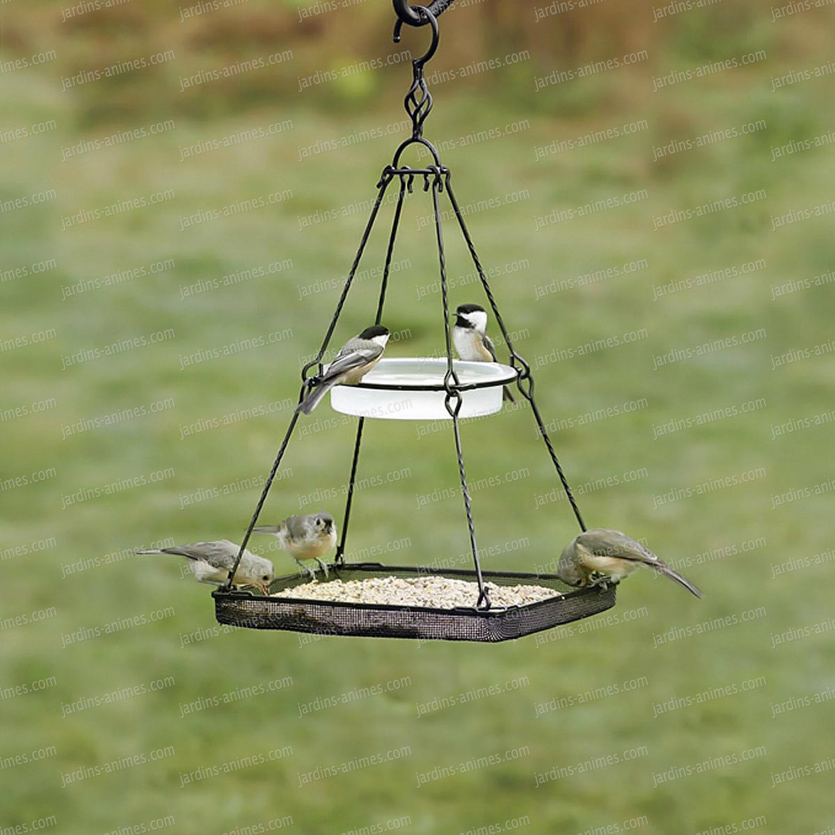 Wire mesh for bird feeders baffled cage squirrel proof for Mesh feeder ideas