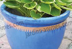 Anti limaces ruban en cuivre 5m x 3cm pour pots anti for Bande cuivre anti mousse