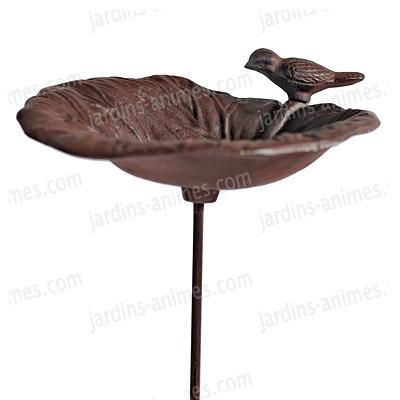 Bain Doiseau Fonte A Piquer Oiseaux Du Jardin