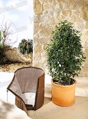 Housse de protection pour pot de fleur protection for Protection hivernale plantes