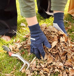 pince ramasse feuilles long manche outils pour ramasser les feuilles. Black Bedroom Furniture Sets. Home Design Ideas