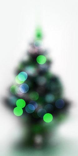 Sapin de noel naturel coup vari t pungens couleur vert bleu loisirs cr atifs - Odeur de sapin dans la maison ...