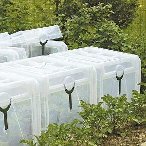 Tous les nouveaux produits du jardin chez jardins animes - Tunnel de forcage rigide pour jardin ...