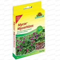 Fortifiant naturel à base de Mycorhizes